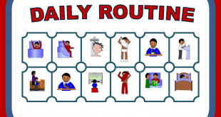 https://eduworldcircle.com/2017/09/01/my-daily-routine/ ‎